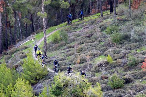רכיבה ביער ביריה (צילום אבי הירשפלד)