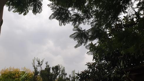 מזג אוויר קיצוני (צילום: אתר 'מיינט העמק')